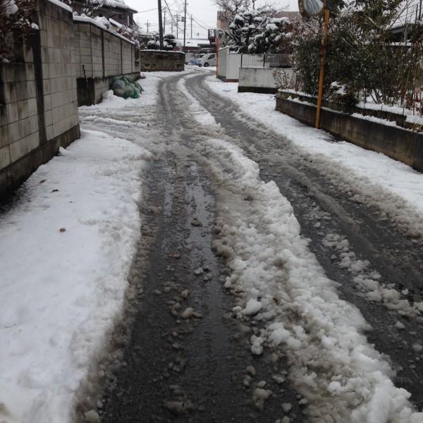 桐生も雪。